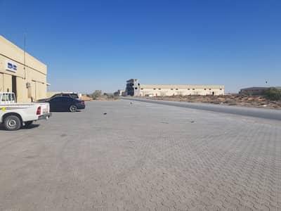 ارض صناعية  للبيع في منطقة الإمارات الصناعية الحديثة، أم القيوين - ارض صناعية في منطقة الإمارات الصناعية الحديثة 775000 درهم - 4940913