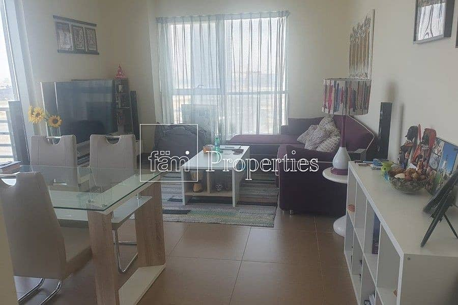2 Massive and Attractive 1 Bedroom Apartment