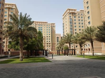 فلیٹ 1 غرفة نوم للايجار في مدينة محمد بن زايد، أبوظبي - شقة في مزيد مول مدينة محمد بن زايد 1 غرف 49000 درهم - 4963481