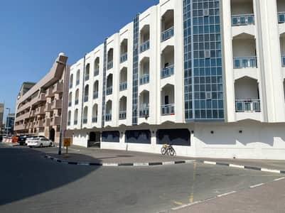 شقة 2 غرفة نوم للايجار في بر دبي، دبي - شقة في أم هرير 1 أم هرير بر دبي 2 غرف 55000 درهم - 4979120