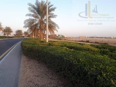ارض سكنية  للبيع في الزوراء، عجمان - الان و بسعر مغري  تملك ارض جاهزة للبناء في منطقة الزوراء عجمان و اقساط على 3 سنوات