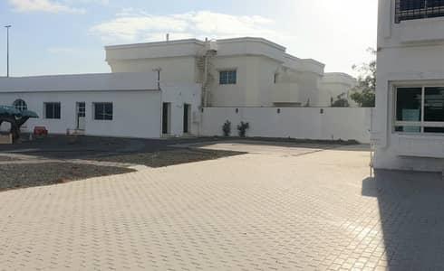 فيلا تجارية 8 غرف نوم للايجار في الصفا، دبي - Massive 8 bed commercial villa in Al Safa 2