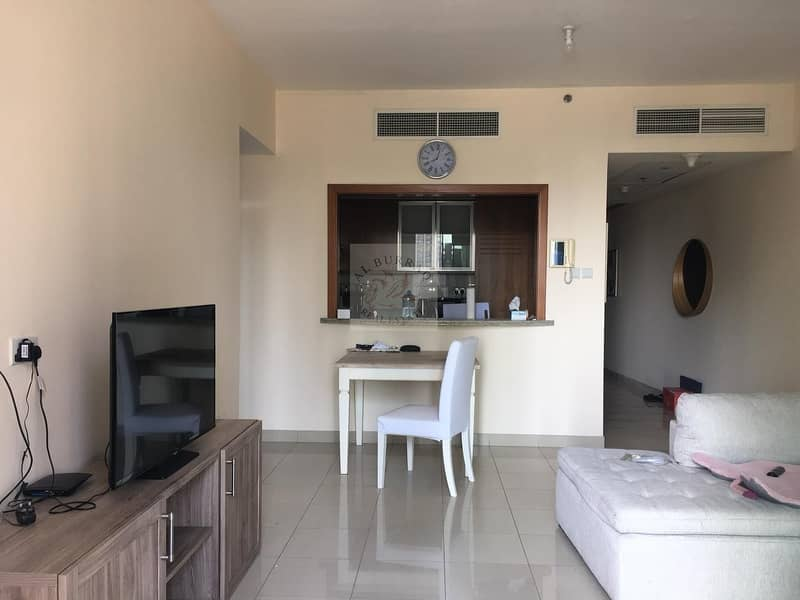 10 FULLY FURNISHED  APARTMENT IN DOWNTOWN