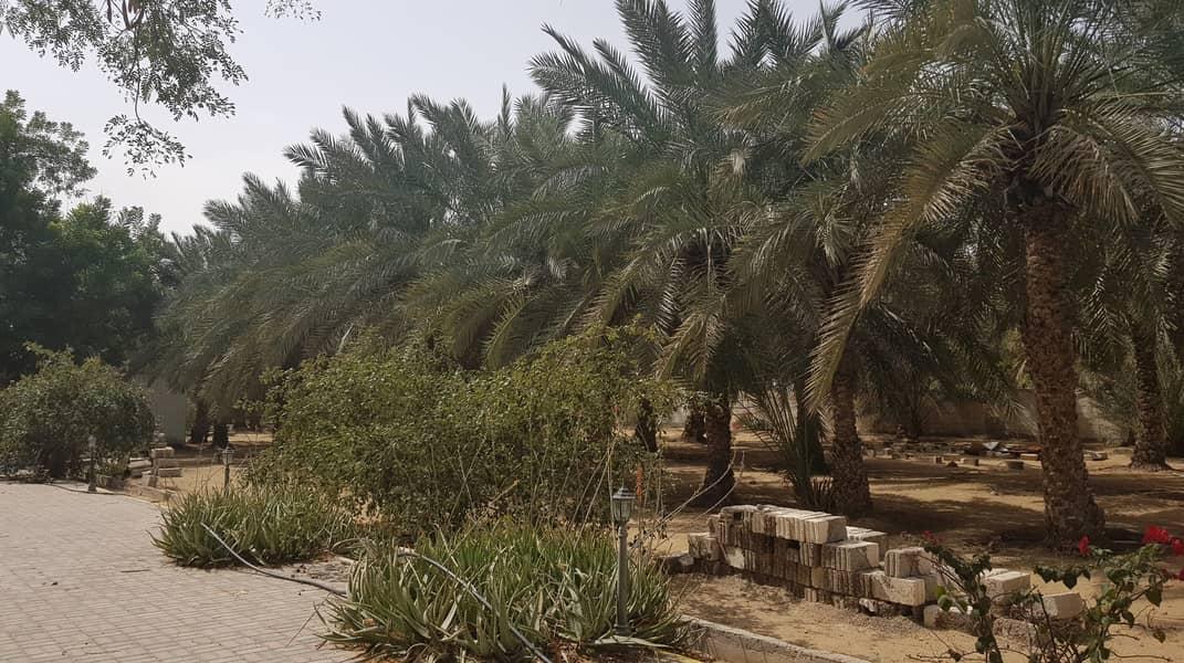 للبيع مزرعة في منطقة الفلاح-بإمارة الشارقة