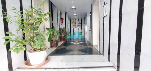 فلیٹ 2 غرفة نوم للايجار في الخالدية، أبوظبي - VERY FRESH 2BHK WITH AMAZING FINISHING
