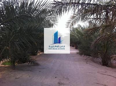 Other Commercial  للبيع في ليوا، أبوظبي - Direct from Owner