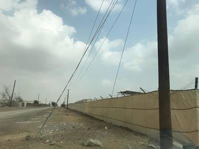 Mixed Use Land for Sale in Al Dhaid, Sharjah - Farm for sale in Sharjah, Al Dhaid, a great location close to the main street