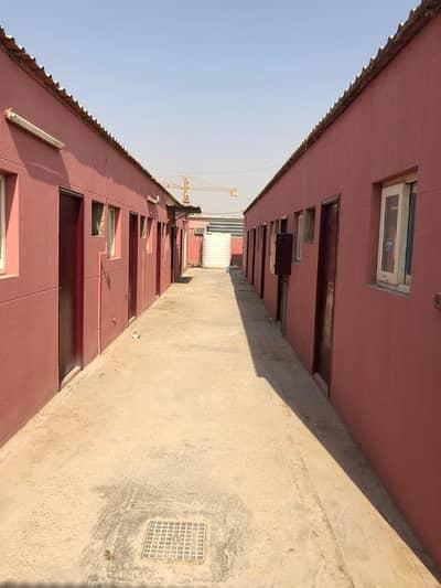 سكن عمال  للايجار في السجع، الشارقة - سكن عمال في السجع 16799 درهم - 5009863