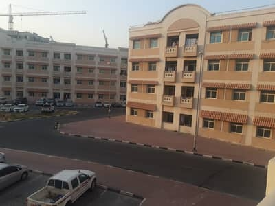 2 Bedroom Flat for Rent in International City, Dubai - 2 bedroom   balcony   1 month free   chiller free   china cluster