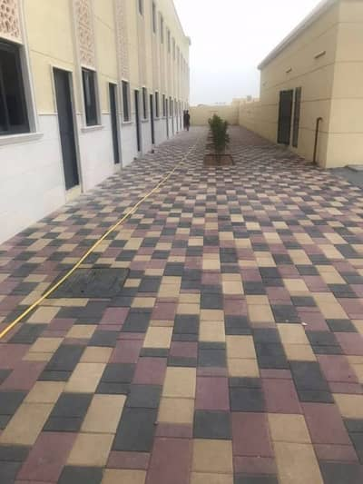 Labour Camp for Rent in Industrial Area, Sharjah - 84 Rooms Independent labour camp for rent in Sharjah