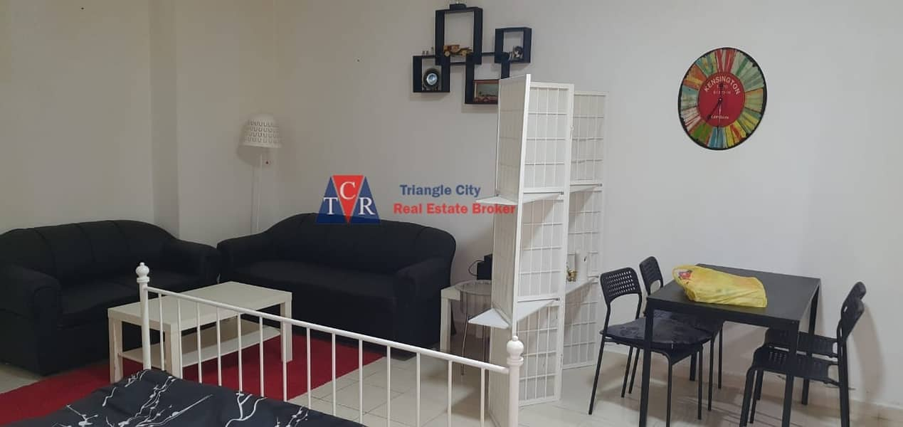 fully furnished studio for rent in england X series