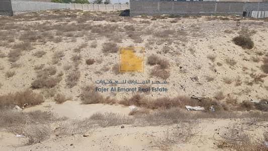 ارض سكنية  للبيع في النوف، الشارقة - Residential and commercial plot for sale Al Noof 4