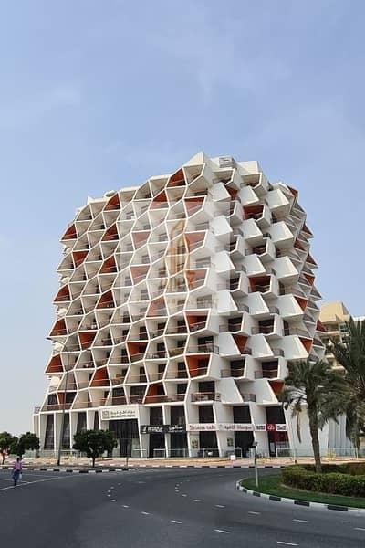 استوديو  للبيع في واحة دبي للسيليكون، دبي - Open Layout Studio  Modern Living  in dubai silicon oasis