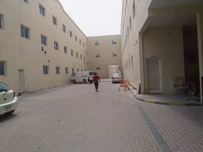 """Labour Camp for Rent in Downtown Jebel Ali, Dubai - Like New labor camp for Lease """"Tax free"""""""