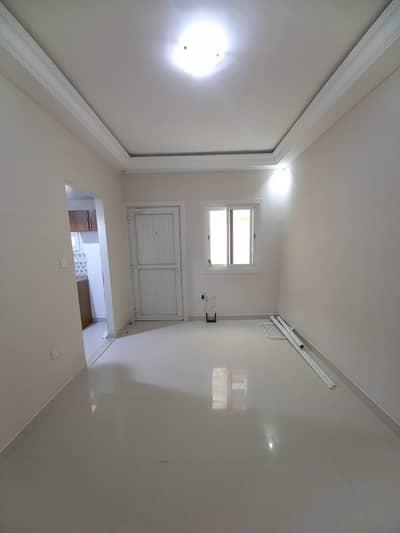 استوديو  للايجار في مدينة خليفة أ، أبوظبي - شقة في مدينة خليفة أ 24000 درهم - 5108771