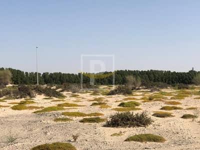 ارض سكنية  للبيع في دبي لاند، دبي - Great Deal! Residential Plot for Sale in Majan | VIP
