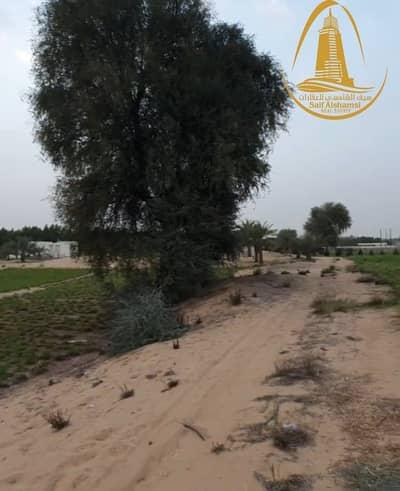 Mixed Use Land for Sale in Al Zubair, Sharjah - FOR SALE A FARM IN AL ZUBAIR AREA