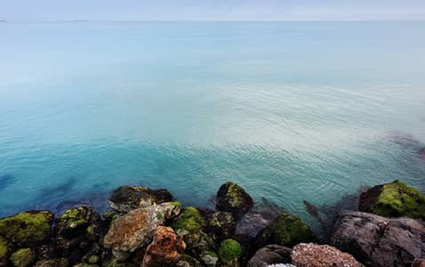 Plot for Sale in Al Jurf, Abu Dhabi - luxury land for sale 5.5 years instalment inside naturel reserve