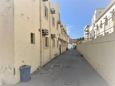 Labour Camp for Rent in Al Jurf, Ajman - NEWELY RENOVATED CAMP DIRECT FROM OWNER