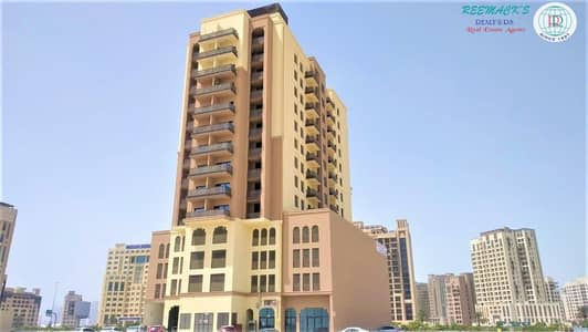 فلیٹ 2 غرفة نوم للايجار في بر دبي، دبي - BRAND NEW  2 BHK + MAIDS ROOM - 3 BATH - CLOSED KITCHEN - 2 BALCONIES - COVERED PARKING