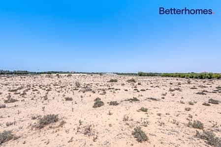 ارض سكنية  للبيع في وادي الصفا 2، دبي - Great Opportunity