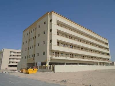 سكن عمال  للايجار في جبل علي، دبي - Direct From Owner 1450 Monthly - 5 person capacity