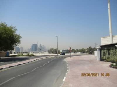 ارض سكنية  للبيع في بر دبي، دبي - ارض سكنية في المنخول بر دبي 16000000 درهم - 5150737