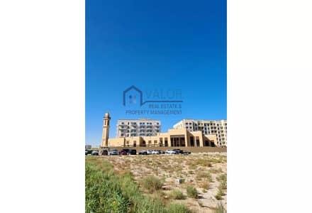 Plot for Sale in Liwan, Dubai - G+4 | Residential Plot | Investor's Deal