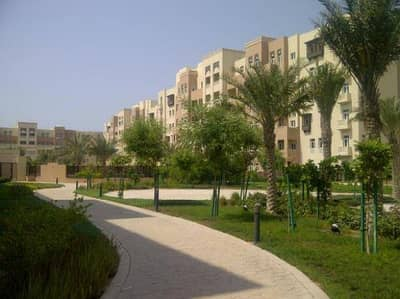 3 Bed Maid Vacant Apartment in Masakin Al Furjan
