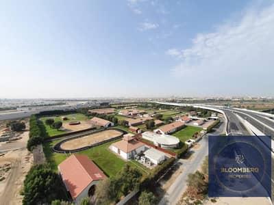 فلیٹ 1 غرفة نوم للبيع في الخليج التجاري، دبي - Horse stable view   Huge & Spacious