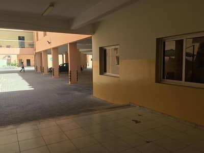 سكن عمال  للايجار في جبل علي، دبي - 6 person-1600 per month-Independent camp-Cheapest