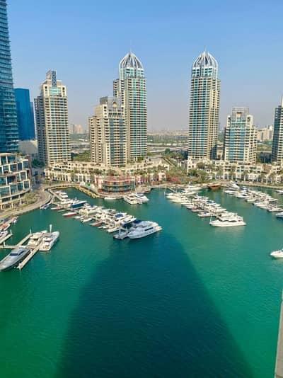 1 Bedroom Flat for Rent in Dubai Marina, Dubai - IRIS BLUE BEAUTIFUL FURNISHED 1BHK WITH STUNINING VIEWS - CHILLER FREE