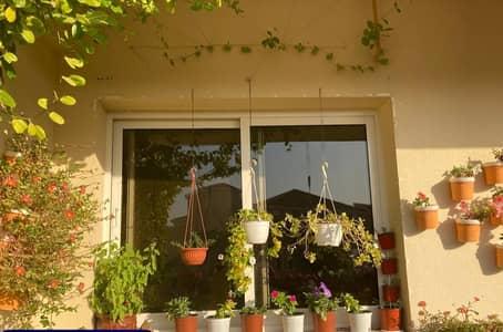 فلیٹ 2 غرفة نوم للايجار في المدينة العالمية، دبي - شقة في إنديجو سبكتروم 1 المدينة العالمية 2 غرف 48000 درهم - 5185449