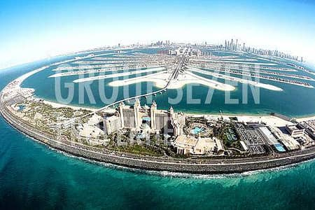 3 Bdr Apartment for Rent in Shoreline Palm Jumeirah