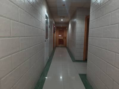 فلیٹ 1 غرفة نوم للايجار في القاسمية، الشارقة - شقة في القاسمية 1 غرف 16000 درهم - 5215015