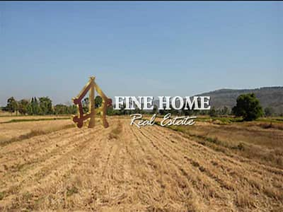 ارض سكنية  للبيع في الجيمي، العین - A Residential Land for Sale