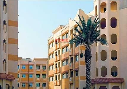 استوديو  للبيع في المدينة العالمية، دبي - RENTED STUDIO FOR SALE IN CHINA CLUSTER   D BLOCK