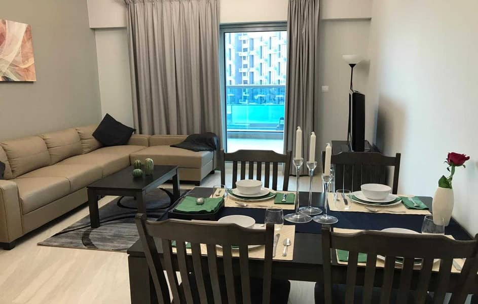 2 Brand New Upgraded Fully Furnished 1BR With Lake View