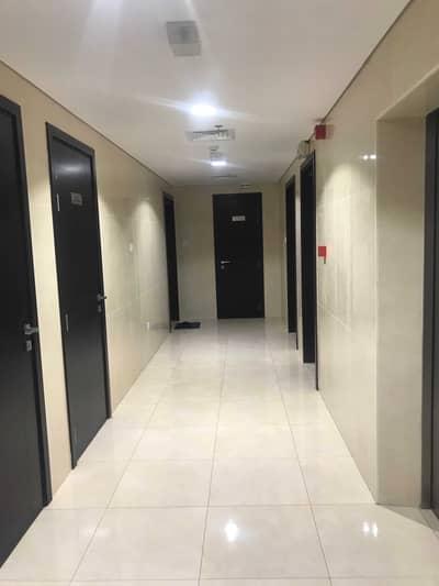 شقة 2 غرفة نوم للايجار في القليعة، الشارقة - شقة في بناية القليعة القليعة 2 غرف 28000 درهم - 5216202