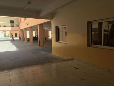Labour Camp for Rent in Jebel Ali, Dubai - 6 person-1600 per month-Independent camp-Cheapest