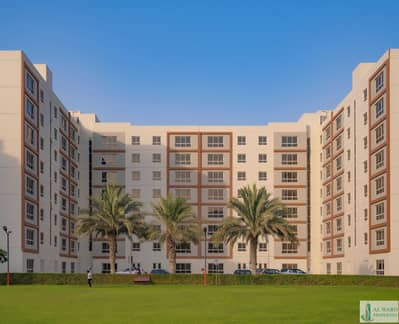 Building for Rent in Al Quoz, Dubai - The Ideal Community for your Staff Housing Needs | Bulk Rental Options are available at attractive prices |