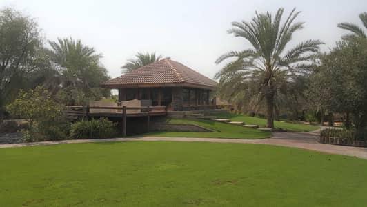 Other Commercial for Sale in Al Khawaneej, Dubai - Unique Beautiful Farm I Fully Equipped I Khawaneej 1st