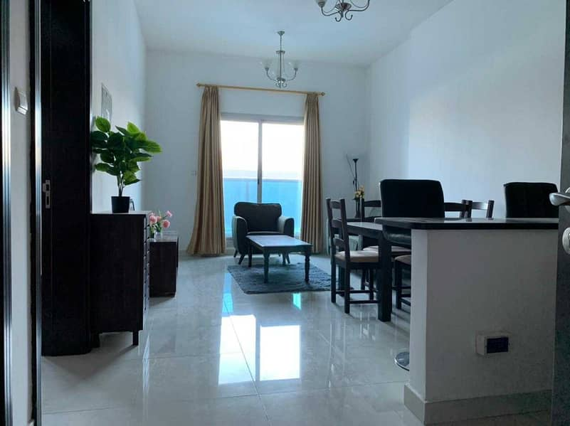 Amazing Recently Renovated  Fully Furnished