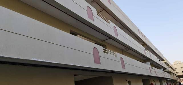 سكن عمال  للايجار في منطقة الإمارات الصناعية الحديثة، أم القيوين - سكن عمال في منطقة الإمارات الصناعية الحديثة 157500 درهم - 5190906