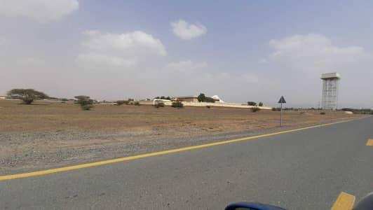 Plot for Sale in Al Manama, Ajman - For sale, land in Manama, residential,