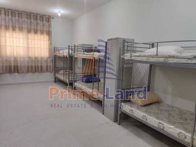 Labour Camp for Rent in Mussafah, Abu Dhabi - Brand New Approved Camp - 350AED / Bed Space