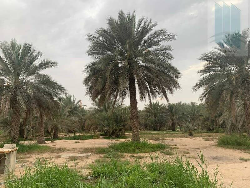 Large farm with villa for sale in Al Awir 1