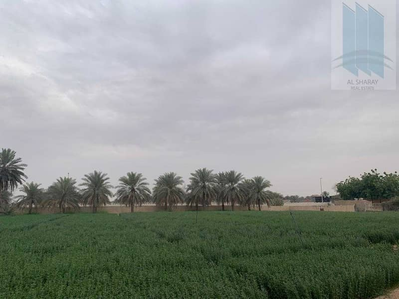 2 Large farm with villa for sale in Al Awir 1