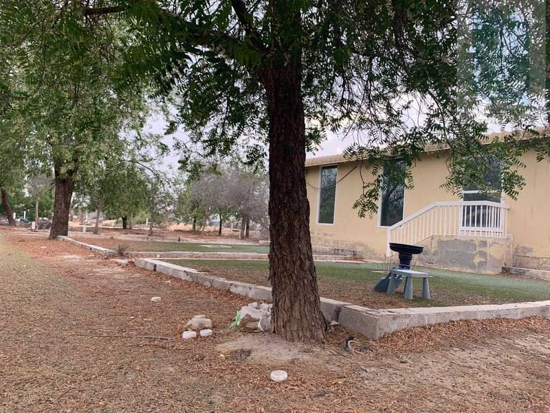 16 Large farm with villa for sale in Al Awir 1