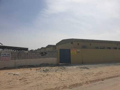 مبنى سكني  للايجار في المنطقة الصناعية، الشارقة - للايجار سكن عمال في الصجعة جديد